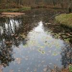 Wahner-Heide-See